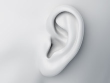 3d Rendered Medically Accurate Illustration Of A Grey Abstract Female Ear