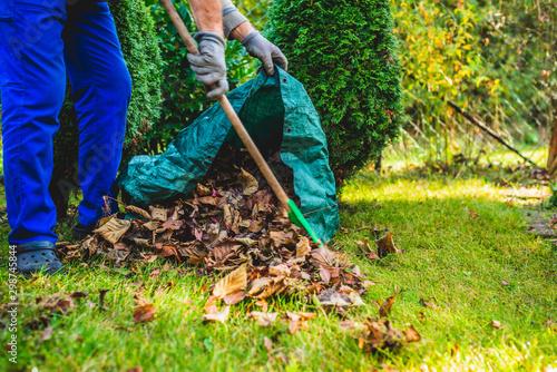 Stampa su Tela Seasonal raking of leaves in the garden