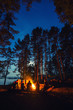 Leinwandbild Motiv Friends in forest near bonfire with guitar. Group of people under night sky with stars enjoy holidays at camping place.