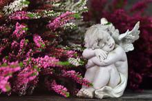 Guardian Angel Sleeping Among Heather Flowers