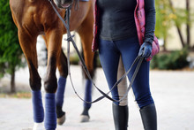 Woman Rider Takes His Horse Fo...