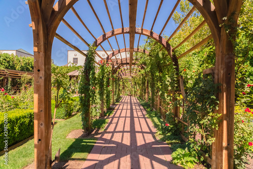 Photo Beautiful garden wedding venue with a wooden arbor wrapped with vibrant vines