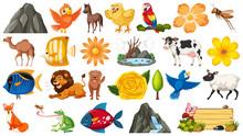 Set Of Different Wild Animals ...