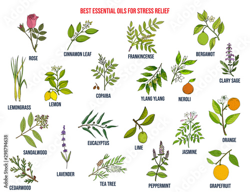 Photo  Best essential oils for stress relief
