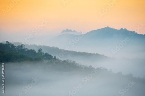 Foto auf Leinwand Rosa dunkel Beautiful fog in the morning