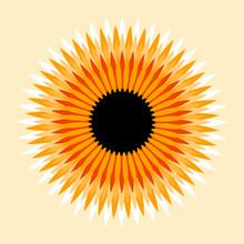 Flower Star Sun Graphic Symbol...