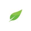 Leaf Logo Template vector symbol