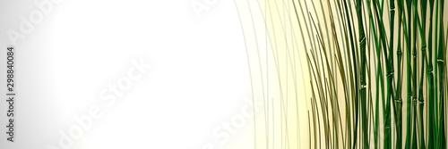 Bambus Abstrakt