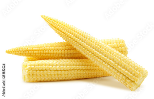 Obraz baby corn, isolated on white background, clipping path, full depth of field - fototapety do salonu