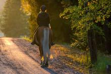 Woman Horseback Riding In Sunset