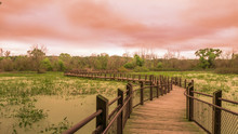 Perspective Of A Dramatic Cloudy Sky At Sunset Along A Michigan Preserve Boardwalk In Natural Wilderness