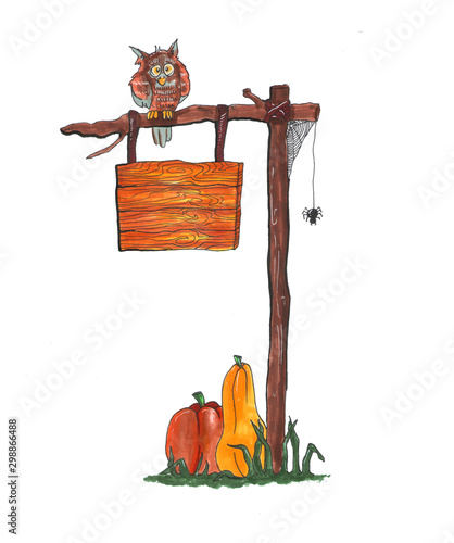 Photo Wooden brown empty sign with owl, spider web and two pumpkins at the bottom isolated on white background