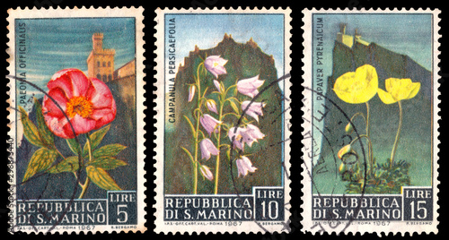 Valokuva  A stamp printed in Italy shows flowers on a background of landscapes San Marino