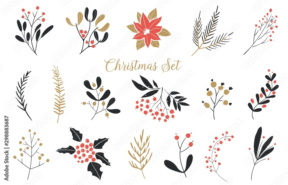 Fototapety, obrazy: Elegant Christmas Graphic Set. Set of plants with flowers, spruce branches, leaves and berries. Hand drawn design elements.