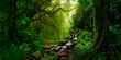 Leinwanddruck Bild - Southeast Asian rainforest with deep jungle