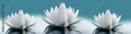 Lilie wodne na zielonym tle do kuchni  - 298893486