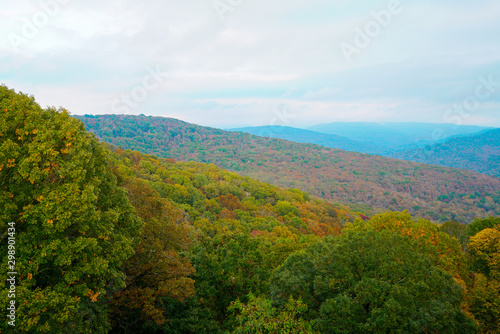 View of the Ozark National Forest along the Boston Mountains Scenic Loop byway i Wallpaper Mural