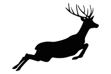 Jumping Deer Silhouette Isolat...