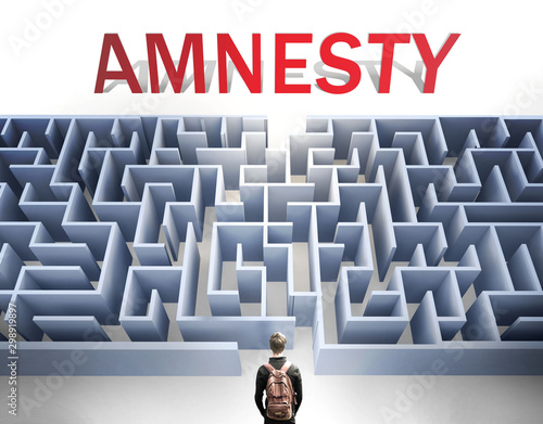 Amnesty can be hard to get - pictured as a word Amnesty and a maze to symbolize Wallpaper Mural