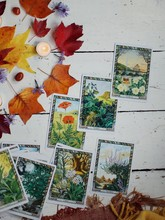 Tarot Spread Living Holistic Life