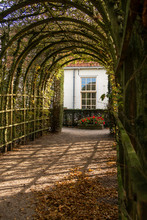 A Nice Arbor In The Netherland...