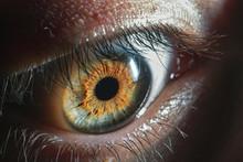 Beautiful Close Up Human Eye. ...