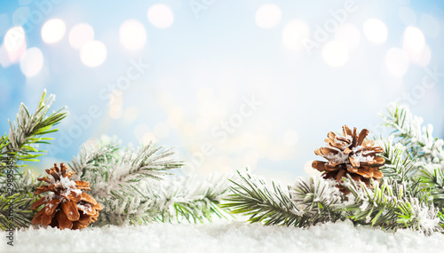 Christmas fir tree branches with pine cones on blurred blue .background. Christmas and Winter concept..