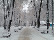 New Year Celebration. Snow Covered Alley With Benches And Lanterns In The City Park In The Central Part Of Town. Beautiful And Picturesque Winter Landscape