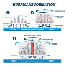 Hurricane Formation Labeled Ve...