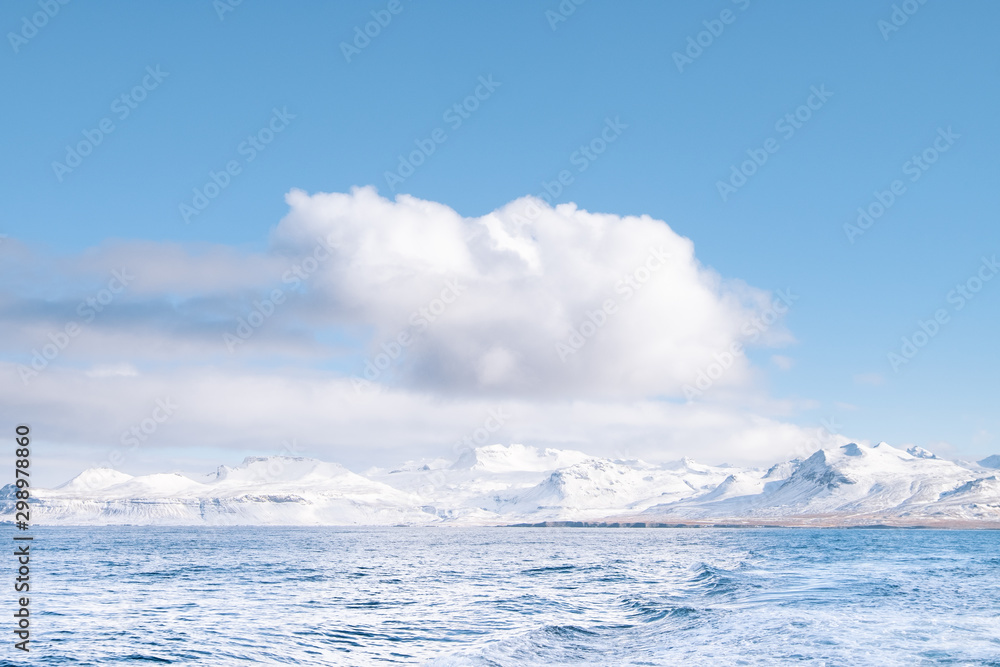 Fjord of Iceland in Winter