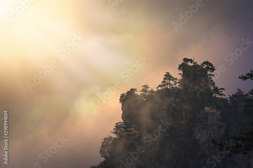 Photo Stands Roe Sun shining on a t ree growing on top of the stone pillar in Tianzi mountains in Zhangjiajie National park