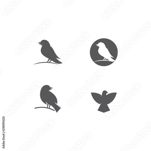 Bird Logo Canvas-taulu