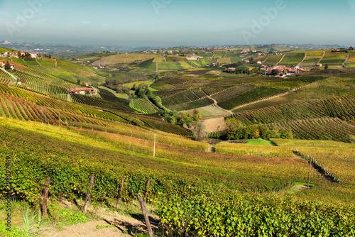 Photo Langhe vineyards of Barbaresco in autumn, Piedmont, Italy.