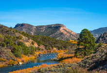 Beautiful Autumn Colors On Rio Grande River Flowing Through New Mexico