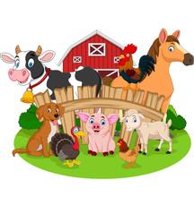 Collection Of Farm Animals Cartoon
