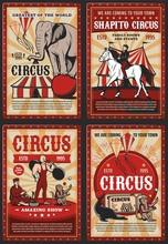 Circus Big Top, Carnival Animals And Strongman