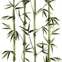 Bamboo Seamless Vertical Borde...