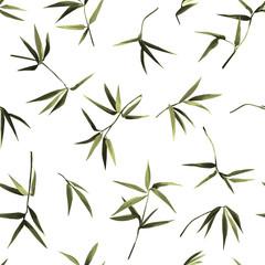 Fototapeta Bambus Bamboo Chaotic Seamless pattern on white background