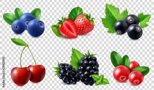 Realistic Berries Set Wallpaper Mural