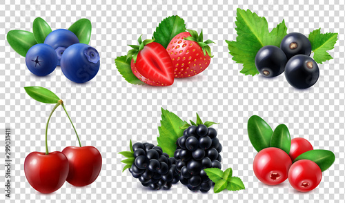Photo Realistic Berries Set