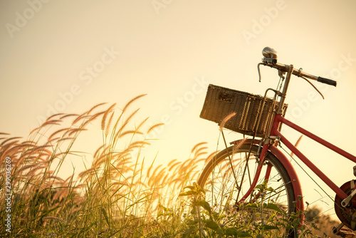 Fotobehang Fiets Retro bicycle in fall season grass field, warm meadow tone