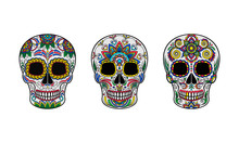 Vector Illustration Of Skulls Decorated With Patterns.