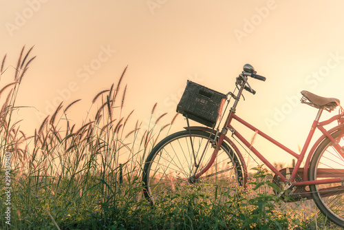 Recess Fitting Bicycle Retro bicycle in fall season grass field, warm meadow tone