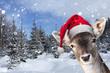 canvas print picture - Junges Rentier im Schnee mit Nikolausmütze