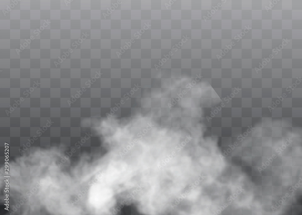 Fototapeta Transparent special effect stands out with fog or smoke. White cloud vector, fog or smog.