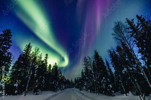 Photo Colorful polar arctic Northern lights Aurora Borealis activity in snow winter fo