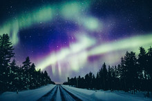 Colorful Polar Arctic Northern...