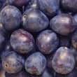 Freshly picked ripe whole plums close-up. Stacked purple sweet fruits.