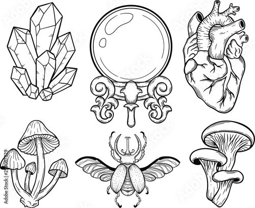 crystal, mushroom, bug, heart, crystal ball, vector hand drawn illustration tatt Fototapete