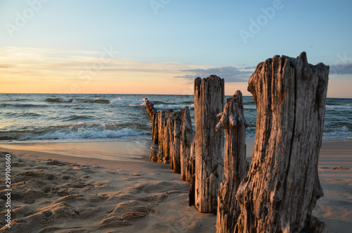 Wooden breakwater during sunset over the Baltic Sea, Uniescie, Poland Canvas Print
